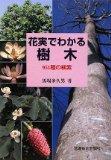 花実でわかる樹木―951種の検索